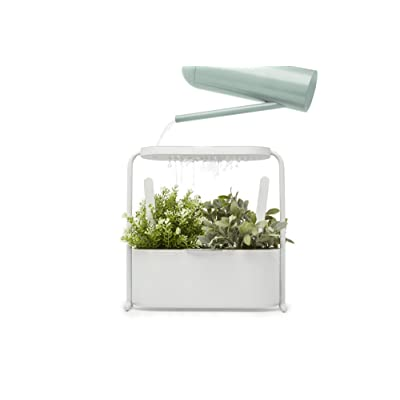 Umbra Giardino Indoor Herb Garden Set with Perforated Shelf and Tray for Water Fall and Drain System Planter, White: Home & Kitchen