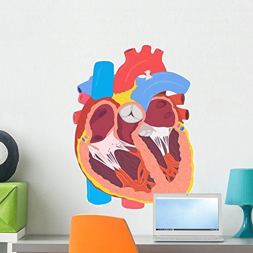 Wallmonkeys Human Heart Peel and Stick Wall Decals WM2714...