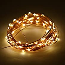 ER CHEN(TM)Indoor and Outdoor Waterproof Battery Operated 100 LED String Lights on 33 Ft Long Ultra Thin Copper String Wire with Timer (Warm White)