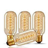 Edison Style Bulb, Hostweigh T45 Vintage Decorative LED Lighting Bulb, E27 E26 Base, Dimmable Filament Bulb for Home Light Fixtures, 110-130V 40W, Warm White, 4 Pack