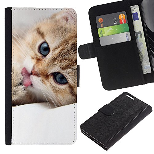EuroCase - Apple Iphone 6 PLUS 5.5 - Maine coon kitten cute pet feline - Cuir PU Coverture Shell Armure Coque Coq Cas Etui Housse Case Cover