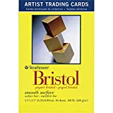 Strathmore Artist Trading Cards 2 1/2 x 3 1/2 Inches 300 series Bristol smooth Pack 20 cards (ST105-901)