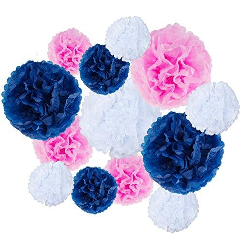 VIDAL CRAFTS Set of 20 Pieces Party Tissue Paper Pom Poms (14