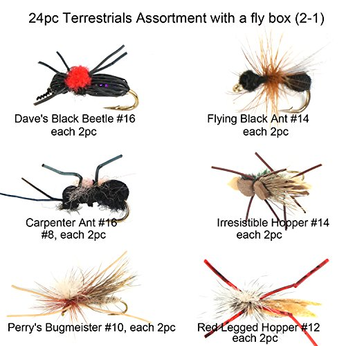 - Riverruns Best Assortment 12 Terrestrials Collection Total 24 Flies with A Fly Box, Amy's Ant, Dave's Foam Hopper, Legged Hopper, Irresistible, Flying Black Ant, Lady Bug Adult Wet Dry Fishin