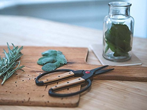 Barebones Living Garden Tool | Scissors, Small