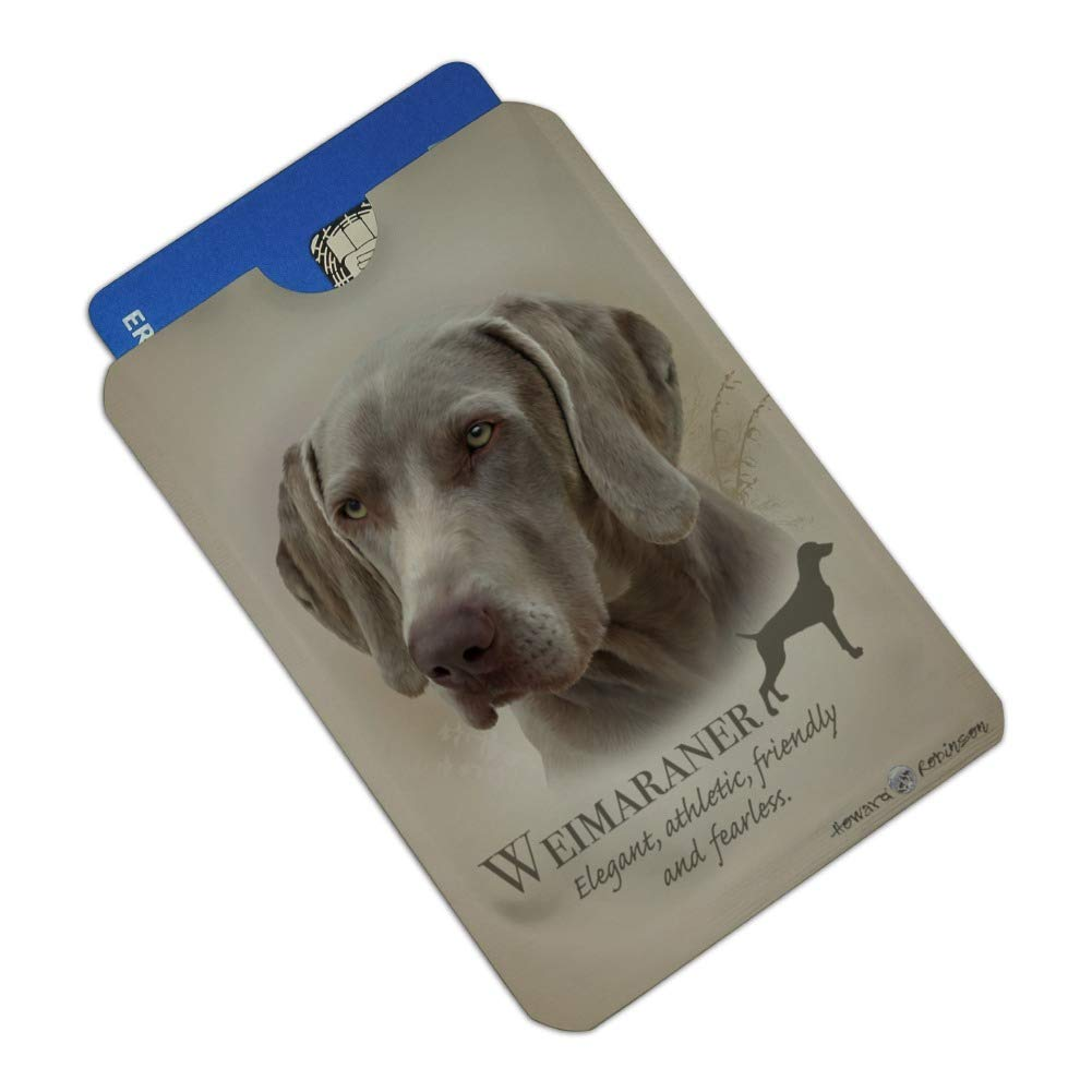 Red Smooth Dachshund Wiener Dog Breed Satin Chrome Plated Metal Money Clip