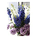 LI-HUA-CAT-Artificial-Silk-Spring-Bush-Grape-Hyacinth-Bundle-Blue-315-Inches-Pack-of-2-Light-Purple-315-inch