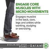 Gaiam Evolve Balance Board for Standing Desk