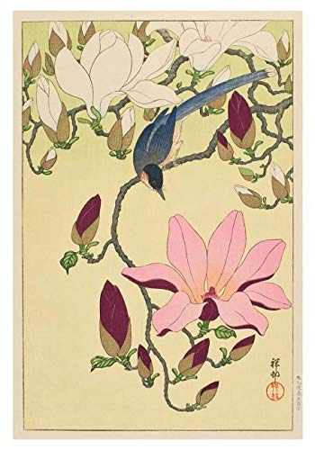 Download Ohara Shoson Magnolia and Magpie Boxed Small Notecards pdf