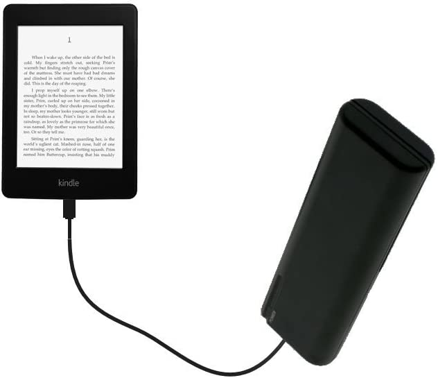 Portable Power Built with upgradeable TipExchange Technology Gomadic Advanced  Kindle Paperwhite Compatible AA Battery Pack Charge Kit