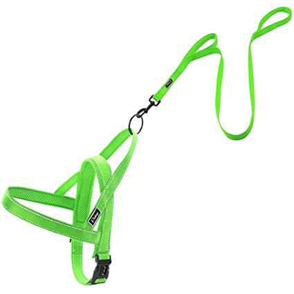 No Pull Reflective Dog Harness Leash Set Pet Vest Lead For Small Meduim Large Dogs Perfect For Daily Training Walking Xxs-l Harnesses Pet Products