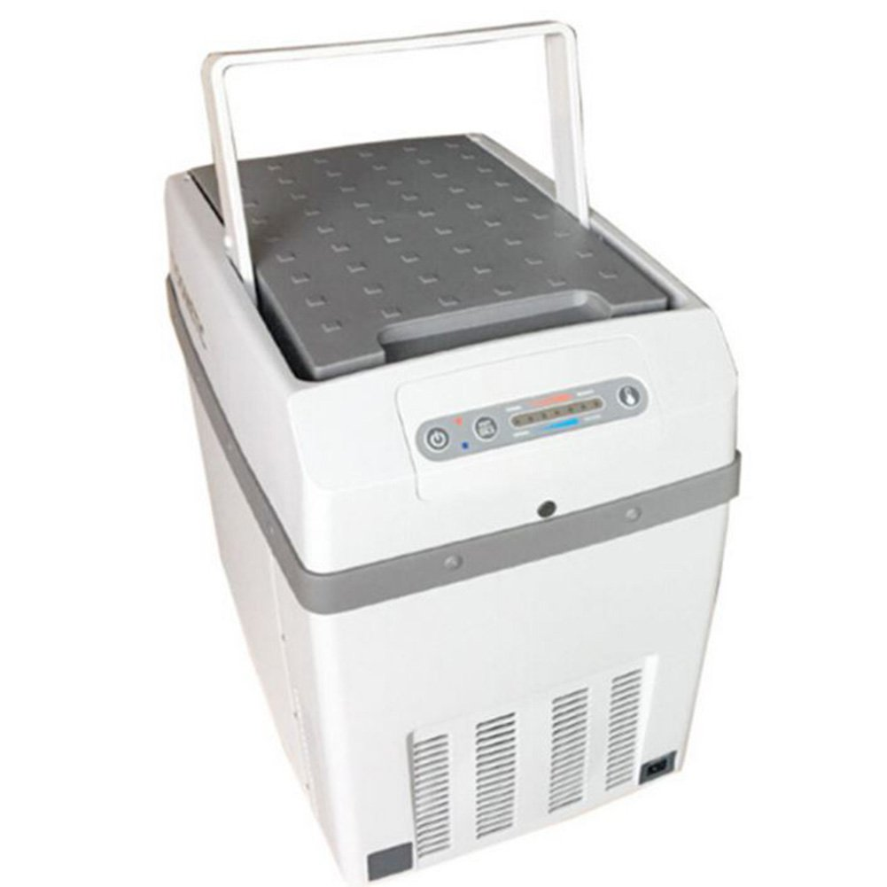 LIQICAI Elektrische Kühlbox Minikühlschrank Kühlung Wärmen Auto Haus Tragbar Kippgriff 12V DC (Auto)/220V AC (Zuhause) (größe : 20L)