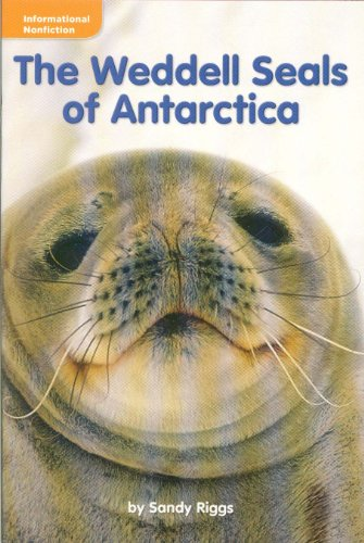 The Weddell Seals (Grade 3 Reading)