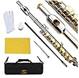 Glory Key of C Piccolo with Case, Joint