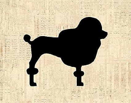 Amazon.com: Classic Poodle Wall Art & Home Decoration Antique Style ...