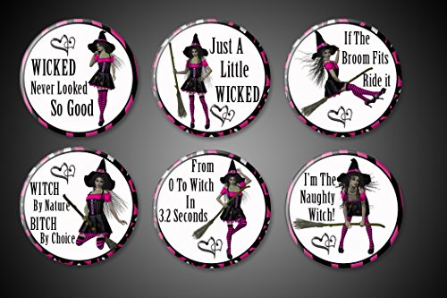 Attitude NAUGHTY Witch Magnets Set of 6 Ornery