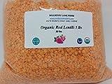 Red Lentils 20 lbs (twenty pounds) USDA Certified Organic, Non-GMO, BULK