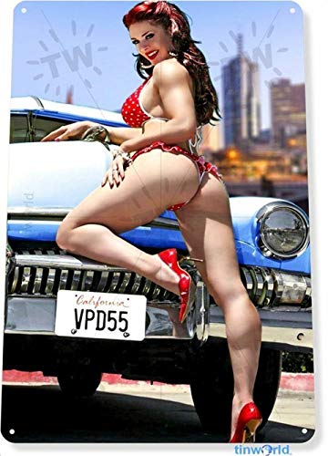 pin up girl car accessories - 5