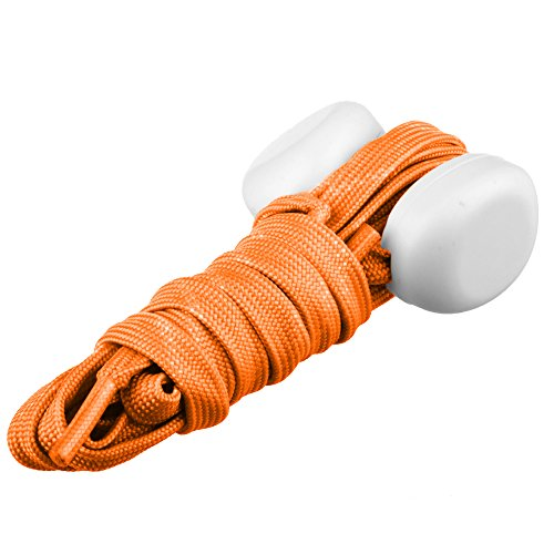Visible Luminoso Cordones Lilware Shoelaces Con Dare To Be QthrsdC