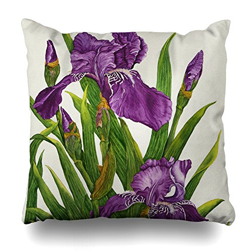 (Decorativepillows 18 x 18 inch Throw Pillow Covers,Purple Iris Botanical Pattern Double-Sided Decorative Home Decor Indoor/Outdoor Garden Sofa Bedroom Car Kitchen Nice Gift)