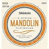 D'Addario EFW74 Phosphor Bronze Flatwound Mandolin Strings, Medium, 11-36