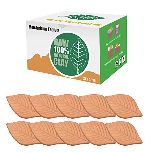 Hunthawk Brown Sugar Saver, 10PC Leaf Terracotta Sugar Saver Keeping Moist Fresh and Softener