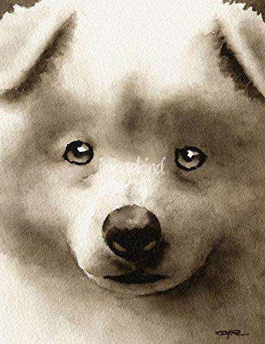 Amazoncom Imagekind Wall Art Print Entitled Samoyed Puppy By David
