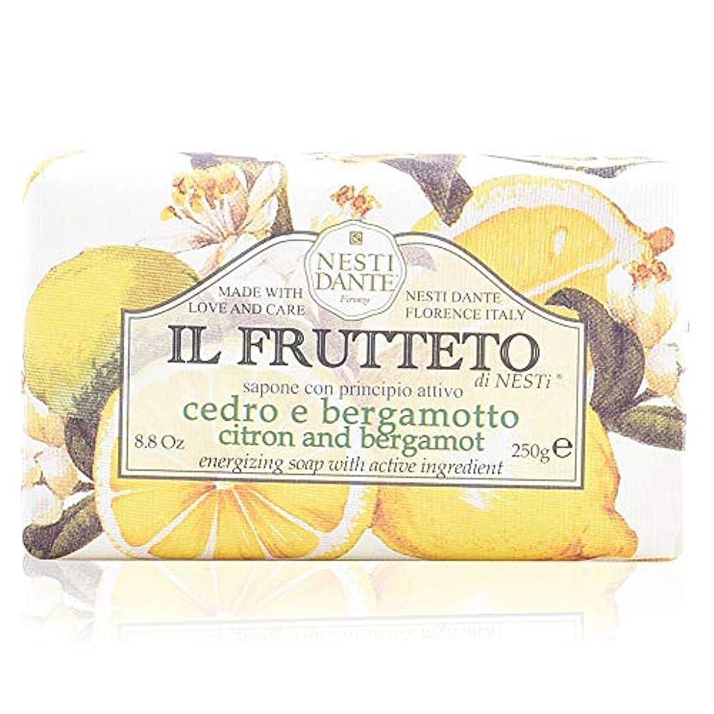 楽観的凍る憂鬱なネスティダンテ イル フルッテート ソープ レモン&ベルガモット 250g