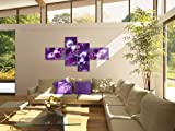 Bilder-Kunstdrucke-Prestigeart-1005458-Bild-auf-Leinwand-Symphony-of-flowers-130-x-725-cm-4-Teile