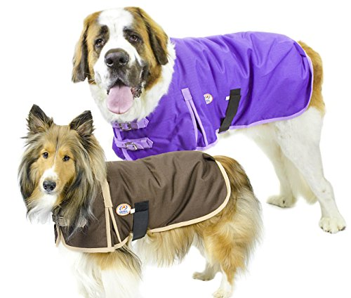 Original 2016 Costumes (Derby Originals 1200D Heavy Duty Waterproof Dog Coat with 2 year limited warranty, Purple, Small)