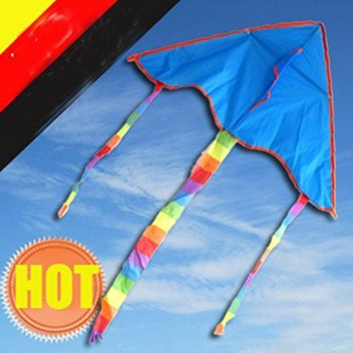 Blue Kite Painting 5pcs/lot With Line Ripstop Nylon And Reasonable Price ,with Control Bar Weifang Factory - Lesson Sunglasses Cheap