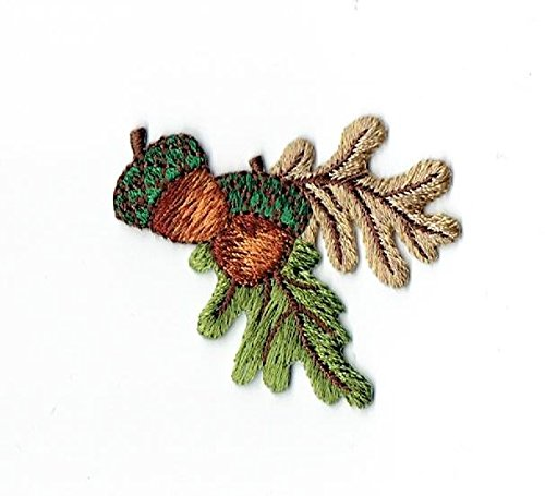 Two Acorns Brown and Green Leaves Iron on Embroidered - Applique Acorn