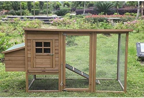 Suinga GALLINERO DE Madera para GALLINAS 98x76x103 cm. Caseta de Madera para gallinas Rectangular con Parque Interior de Perchas y Bandeja colectora.: Amazon.es: Jardín
