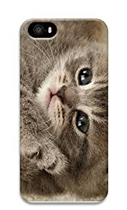 iPhone 5 5S Case Enron Cat 3D Custom iPhone 5 5S Case Cover