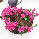 jiumengya-10pcs-Silk-Bougainvillea-Glabra-Climbing-Bougainvillea-Flower-Artificial-Bougainvillea-Tree-Branches-315-six-Colors-for-Wedding-Centerpieces-deep-Pink