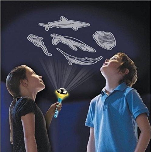 Bajo el agua Mundo linterna con lámpara de animales marinos ...