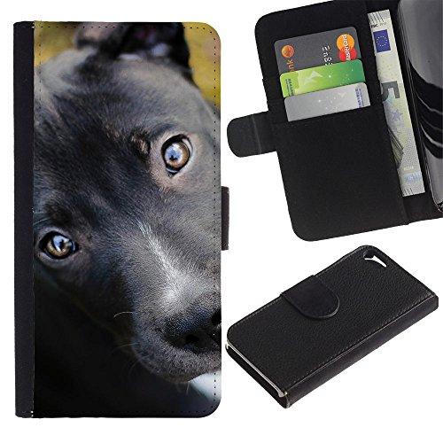 EuroCase - Apple Iphone 5 / 5S - pit bull terrier puppy black eyes dog - Cuero PU Delgado caso cubierta Shell Armor Funda Case Cover