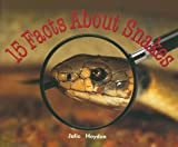 Rigby Focus Early Fluency: Leveled Reader 15 Facts About Snakes