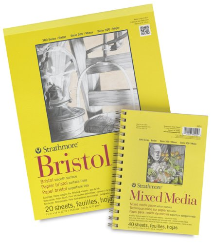 Strathmore 300 Series Bristol Sheet, 100 lb. Vellum Surface, 22.5 X 28.5 inches, White, 25 Sheets (345-12)