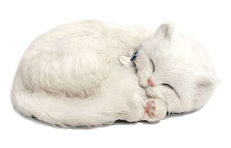 Perfect Petzzz 4934 - Gato de peluche, color blanco