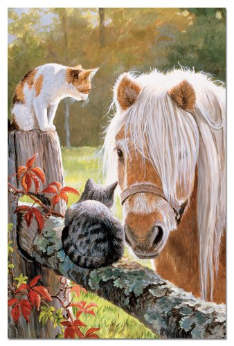 Tree-Free Greetings Eco Notes 12 Count Notecard Set with Envelopes, 4x6 Inches, Just Visiting Themed Horse Art