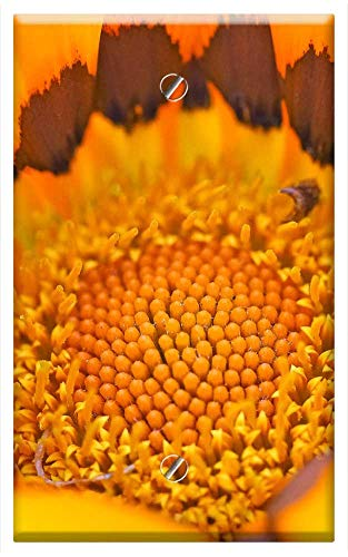 (Single-Gang Blank Wall Plate Cover - Cape Basket Flower Spanish Marguerite Composites 1 )