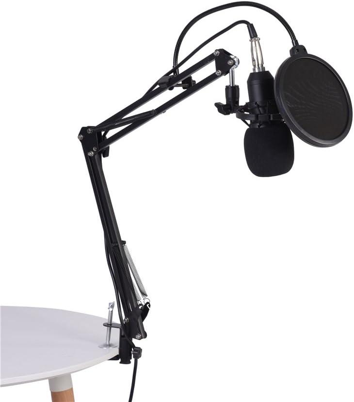 Kondensator Mikrofon Kit BM800/Studio Mikrofon mit Arm St/änder Pop Filter Anti-Shock Mount und USB Audio Adapter f/ür Studio Recording