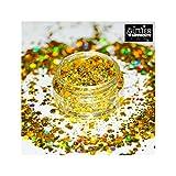 GlitterWarehouse Sunlight Gold Chunky Glitter Loose Holographic Solvent Resistant Cosmetic Grade Glitter (20g Jar)
