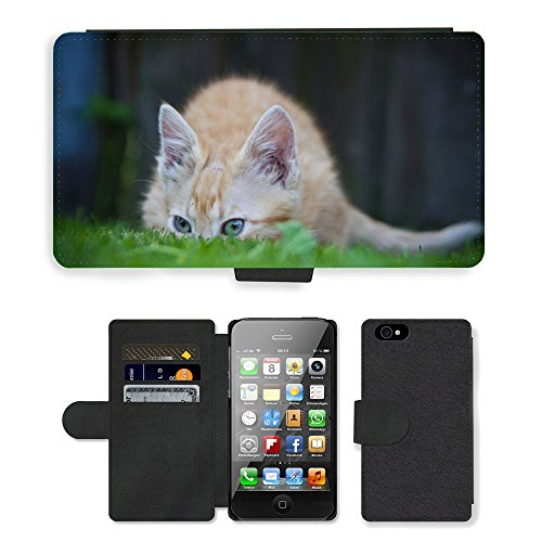 Just Phone Cases PU Leather Flip Custodia Protettiva Case Cover per // M00128709 Cat Hiding Herbe drôle animal // Apple iPhone 4 4S 4G