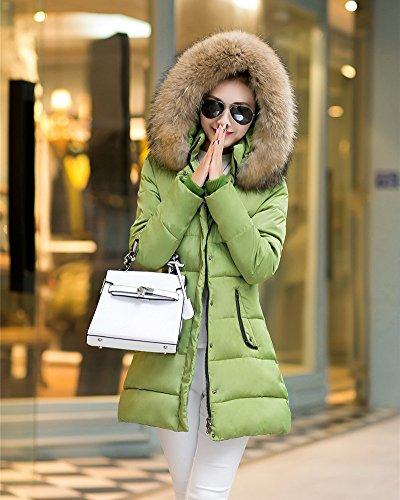 Invierno Chaquetas con Mujer Ligero pluma Chaqueta de Abajo de Verde capucha Chaqueta Rompevientos Rf6fqxICw