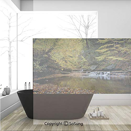 Leaf Waterfalls Copper (3D Decorative Privacy Window Films,Small Waterfall Brandywine Creek National Park Ohio Autumn Fallen Leaves,No-Glue Self Static Cling Glass Film for Home Bedroom Bathroom Kitchen Office 36x24 Inch)