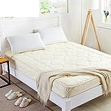 Textile mattress mattress bed pad quilt anti-skidding folding bed tatami mats double student-A 150x200cm(59x79inch)