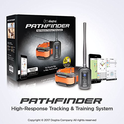 Dogtra Pathfinder High-Response Tracking & Training System, Black, One Size by Dogtra (Image #1)