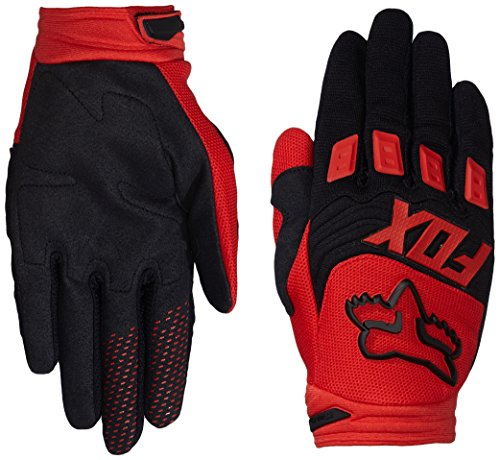 Gloves Dirtpaw Motorcycle (Fox Men's Dirtpaw Race Gloves, Red, Large)
